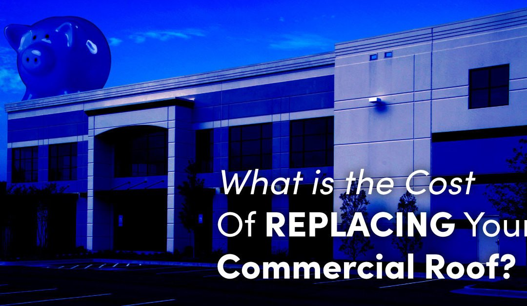 What is the Cost of Replacing Your Commercial Roof?