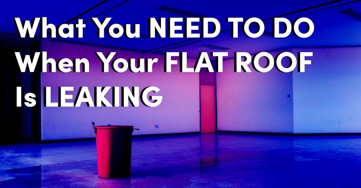 What You Need to Do When Your Flat Roof is Leaking